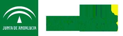 Servicio Andaluz de Salud - LDA Audio Tech