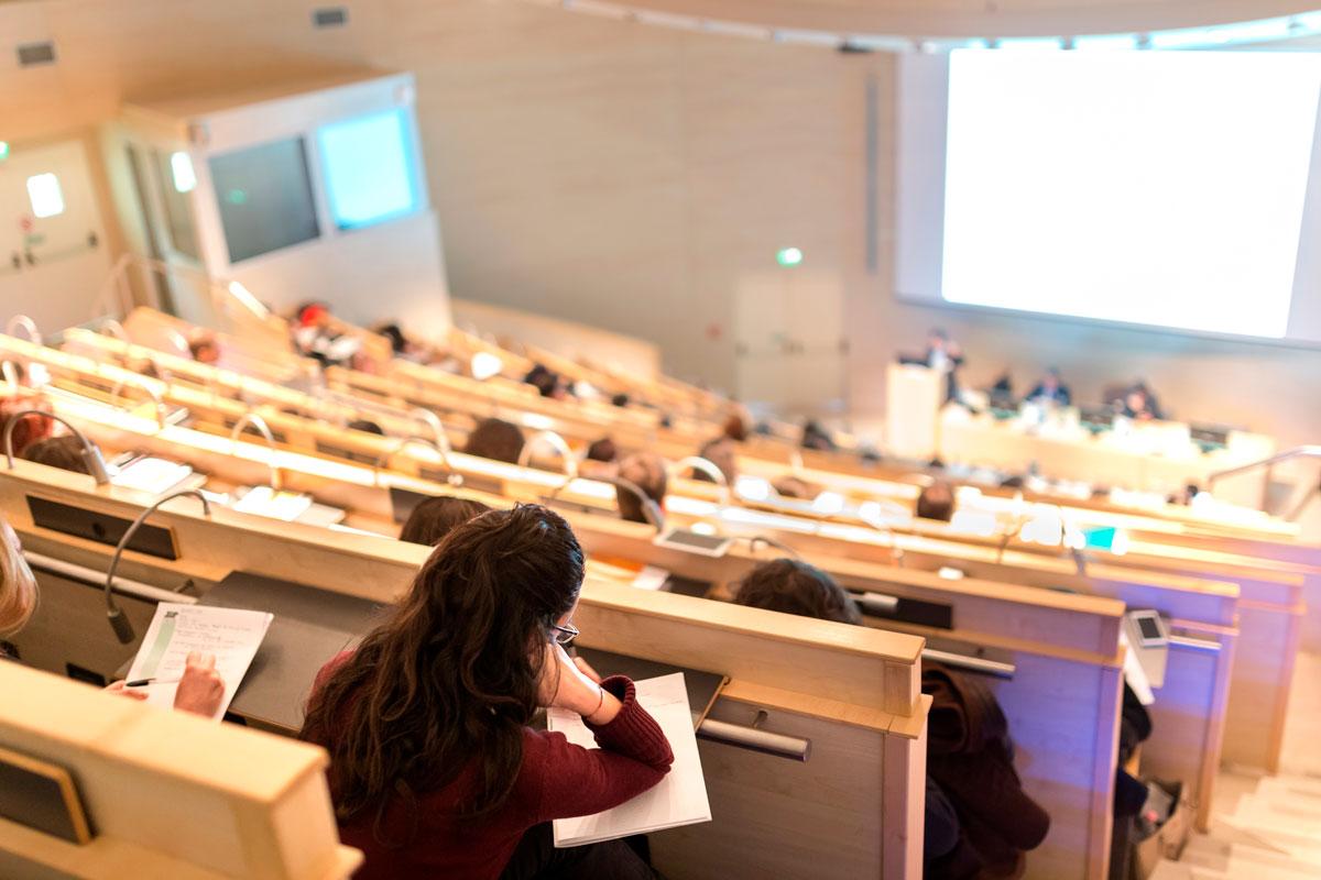 Universities and schools