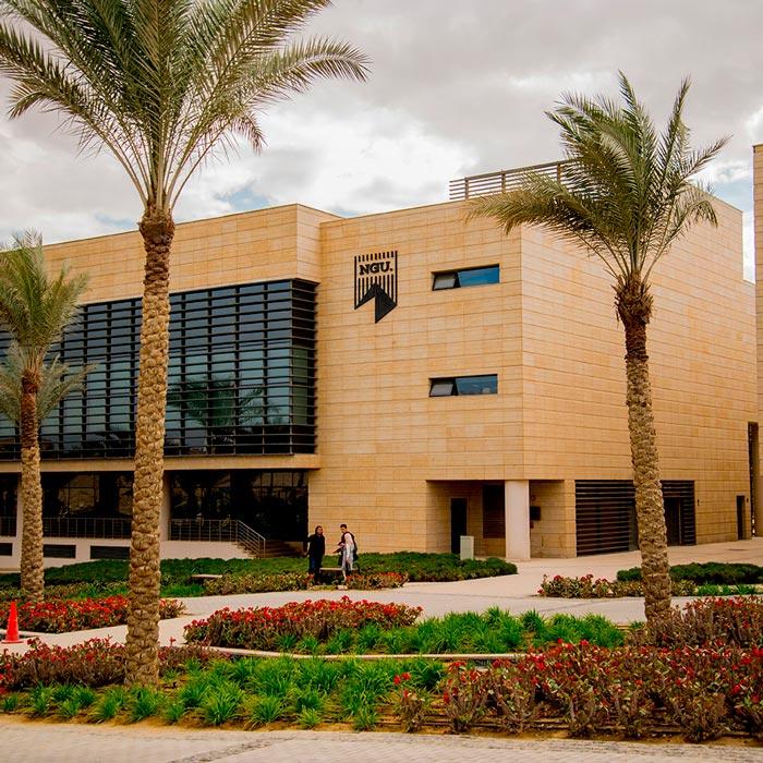 Newgiza University LDA